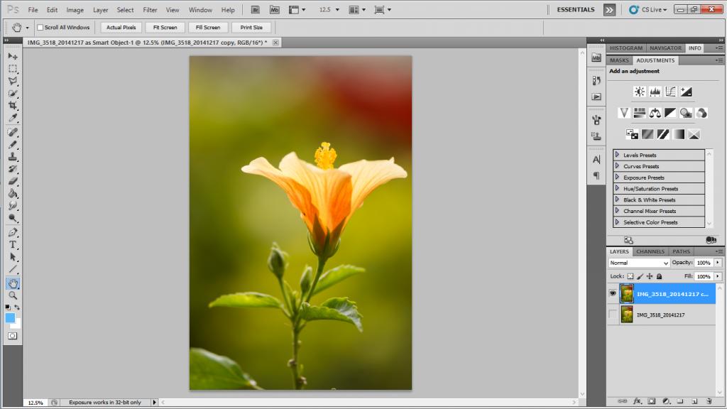 Isolating Image in Photoshop